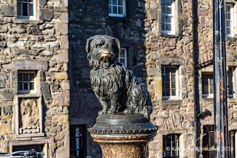 Greyfriars Bobby in Edinburgh, Schottland