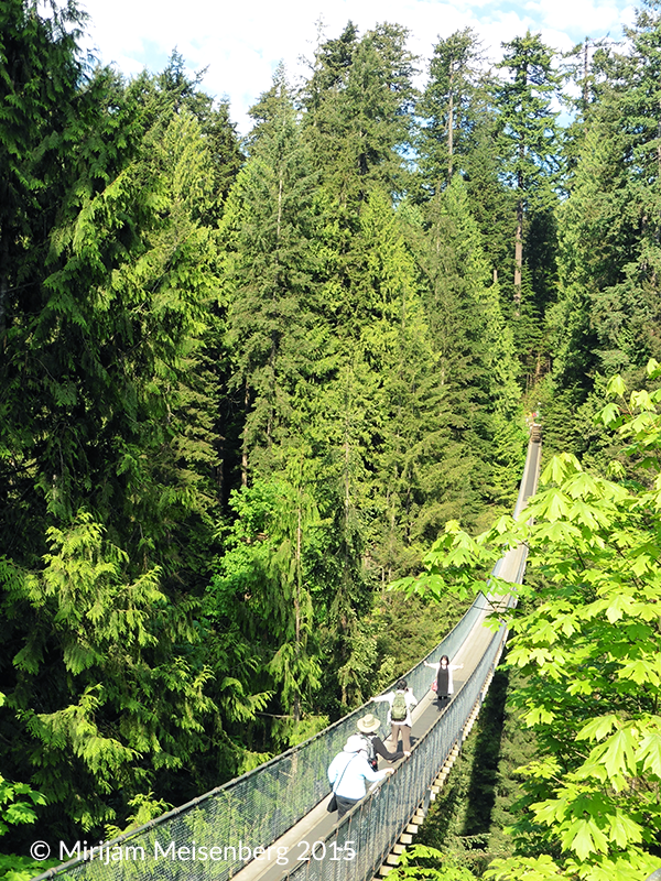 Vancouver: Capilano Suspension Bridge
