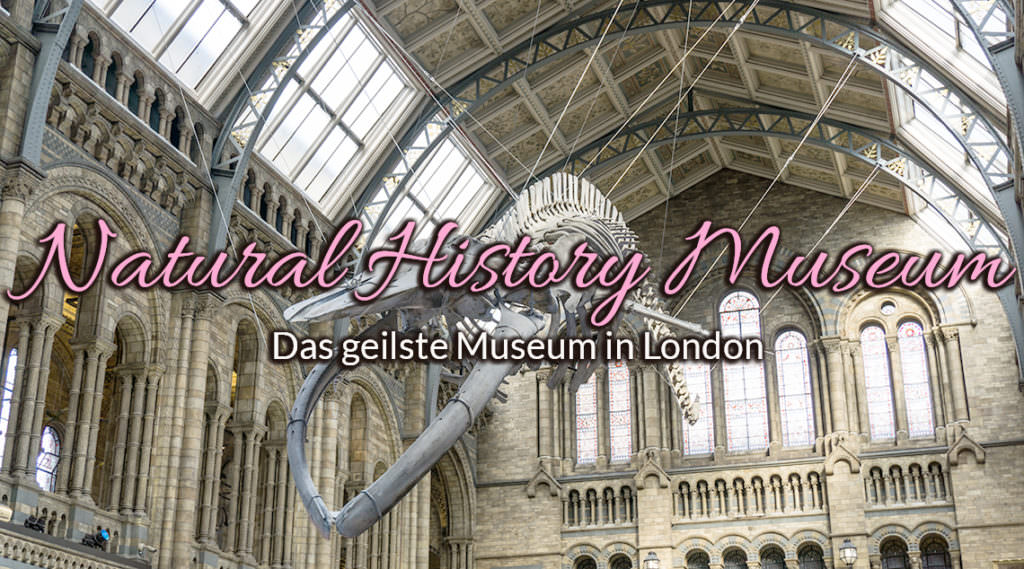 Ein Besuch im Natural History Museum in London