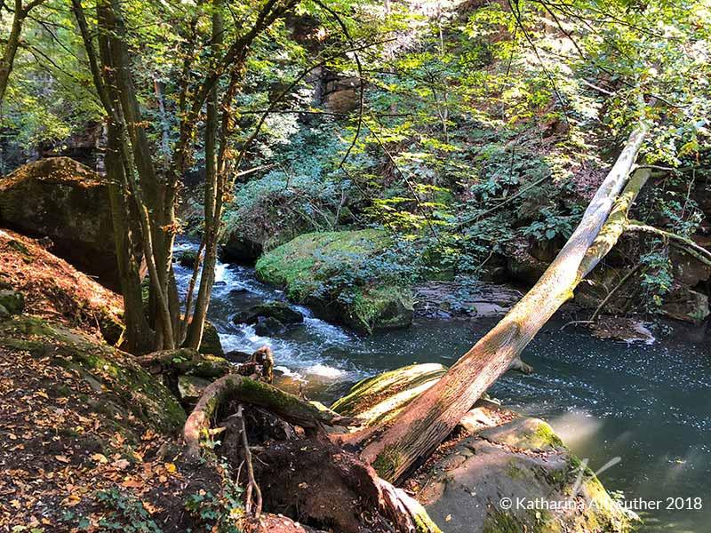 Der Malerweg - Wandern in der Sächsischen Schweiz