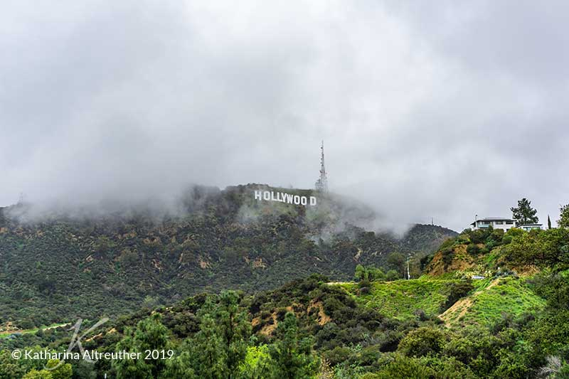 Das Hollywood Sign vom Lake Hollywood Park in Los Angeles