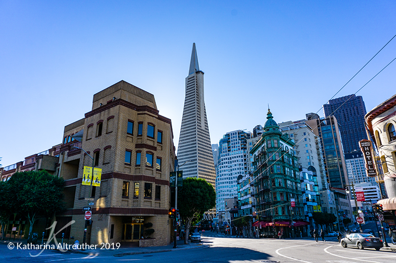 Transamerica Pyramid in San Francisco
