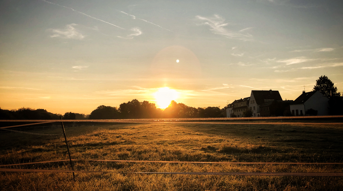 Going Green, auf Reisen und zu Hause – Schritt für Schritt zum Weltretter